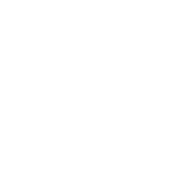 ITG Holding